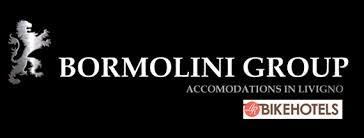 Bormolini Group