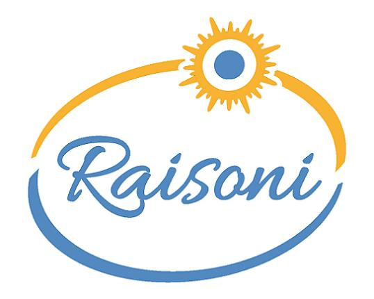 logo raisoni